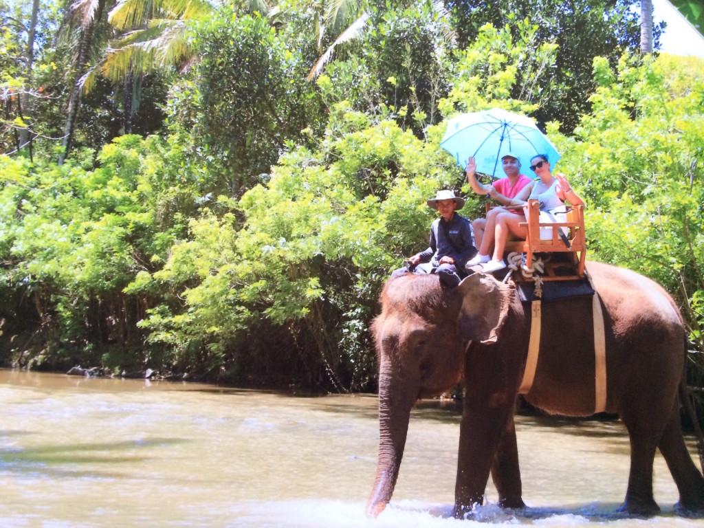 plimbare cu elefant bali
